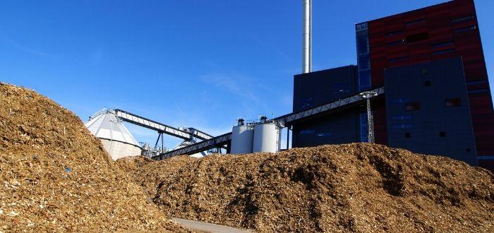 Qué es la energia de biomasa