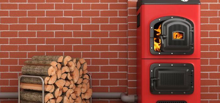 Ejemplos de energía de biomasa