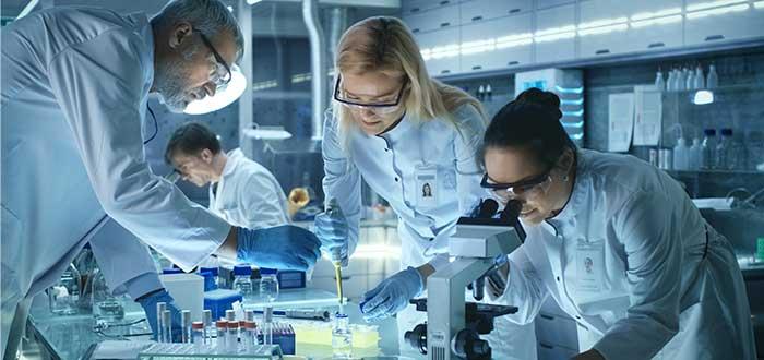 órganos-humanos-investigación