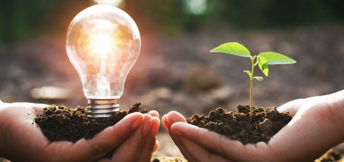 Ejemplo de cómo en la naturaleza se encuentra energía renovable