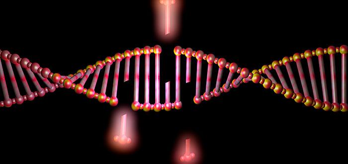 técnica CRISPR cómo-funciona