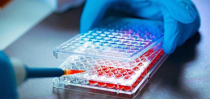 Ingeniería genética bioética