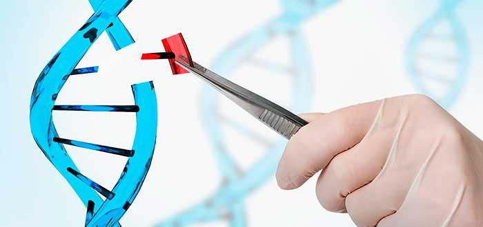 Ingeniería genética qué es