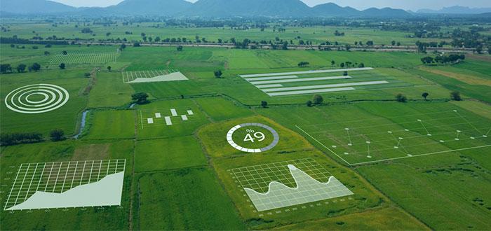 Aplicaciones de la Inteligencia Artificial agricultura 1