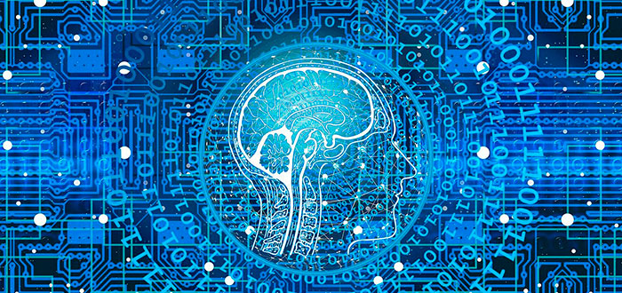 ingeniería neuromórfica aplic