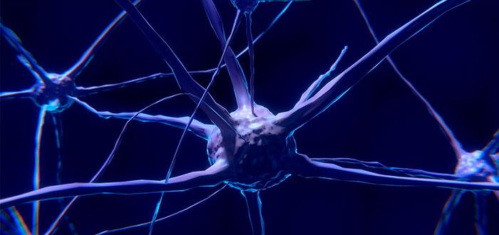 ingeniería neuromórfica qué es