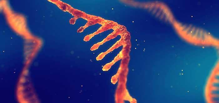 tecnologías emergentes según el MIT: ARN