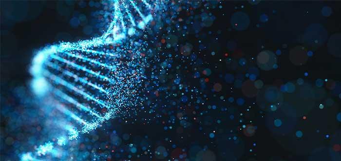 1-RLR-ADN-2