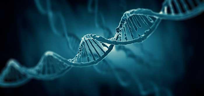 1-RLR-ADN